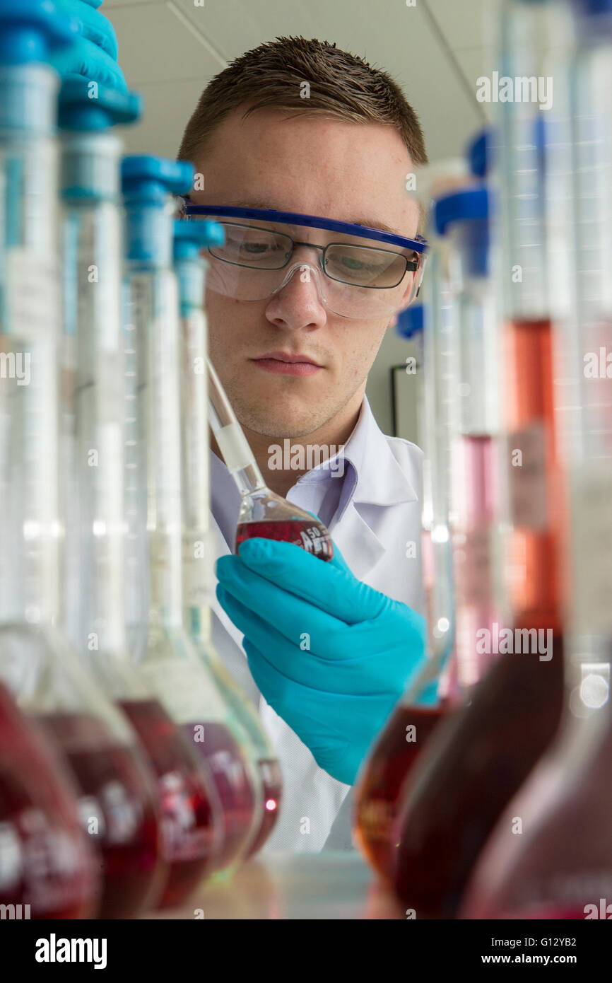 Forensic scientists examining and testing samples - Stock Image