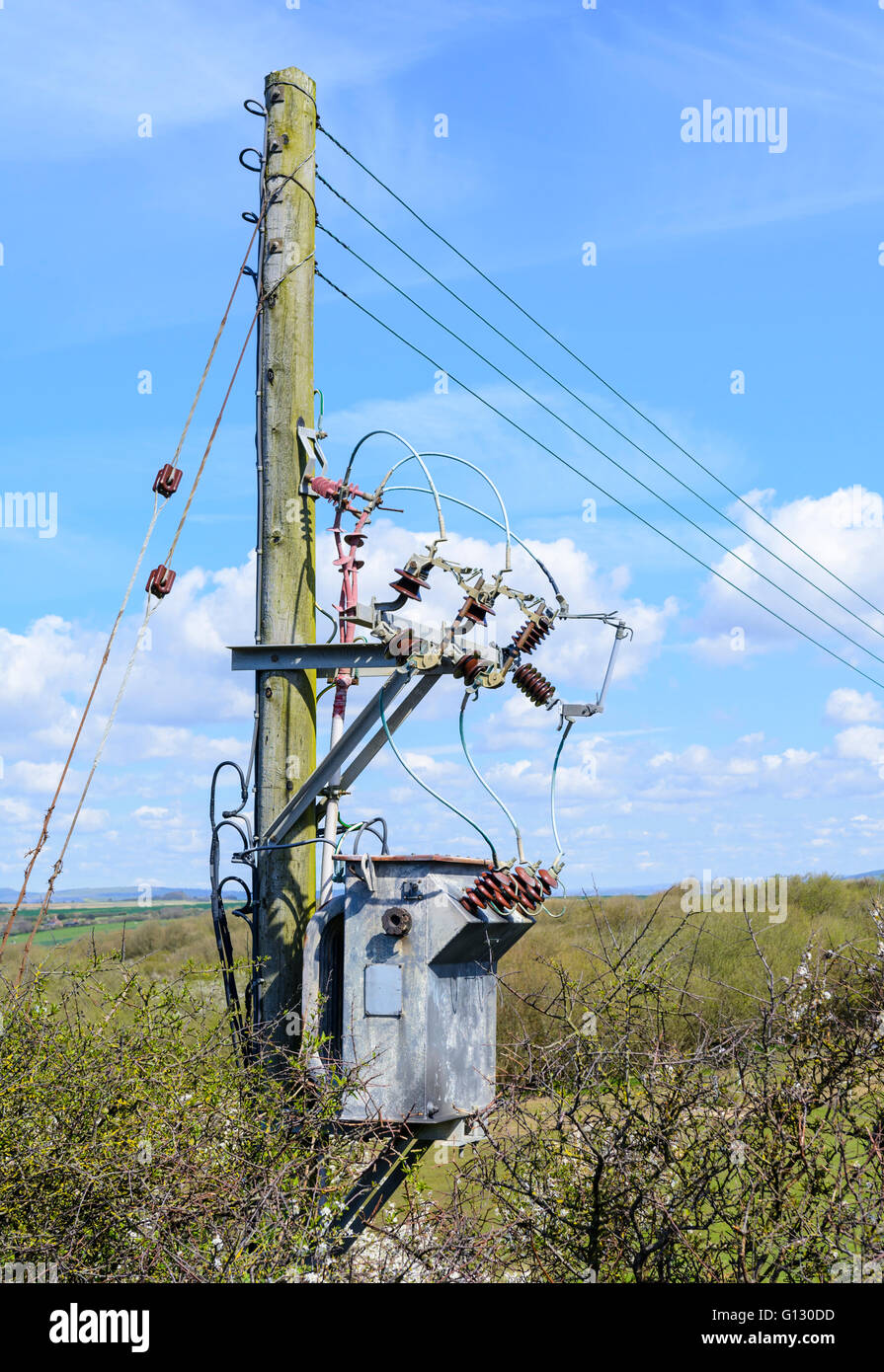Small electricity distribution point on a wooden post in the British countryside. - Stock Image