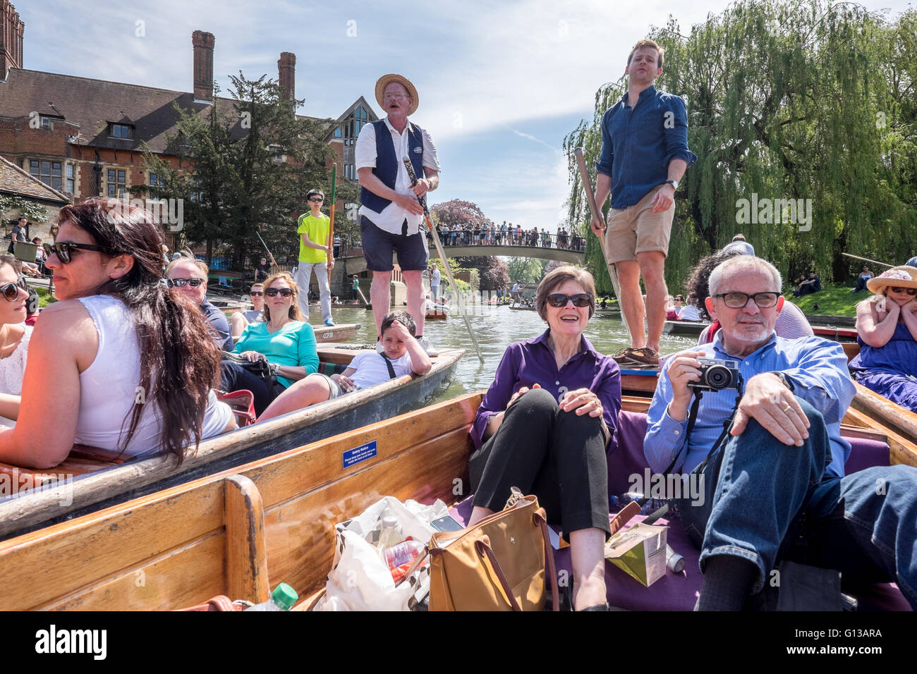 A crowd of punting boats collide crash hit along the Cam River punt tour on a sunny day in May. Stock Photo