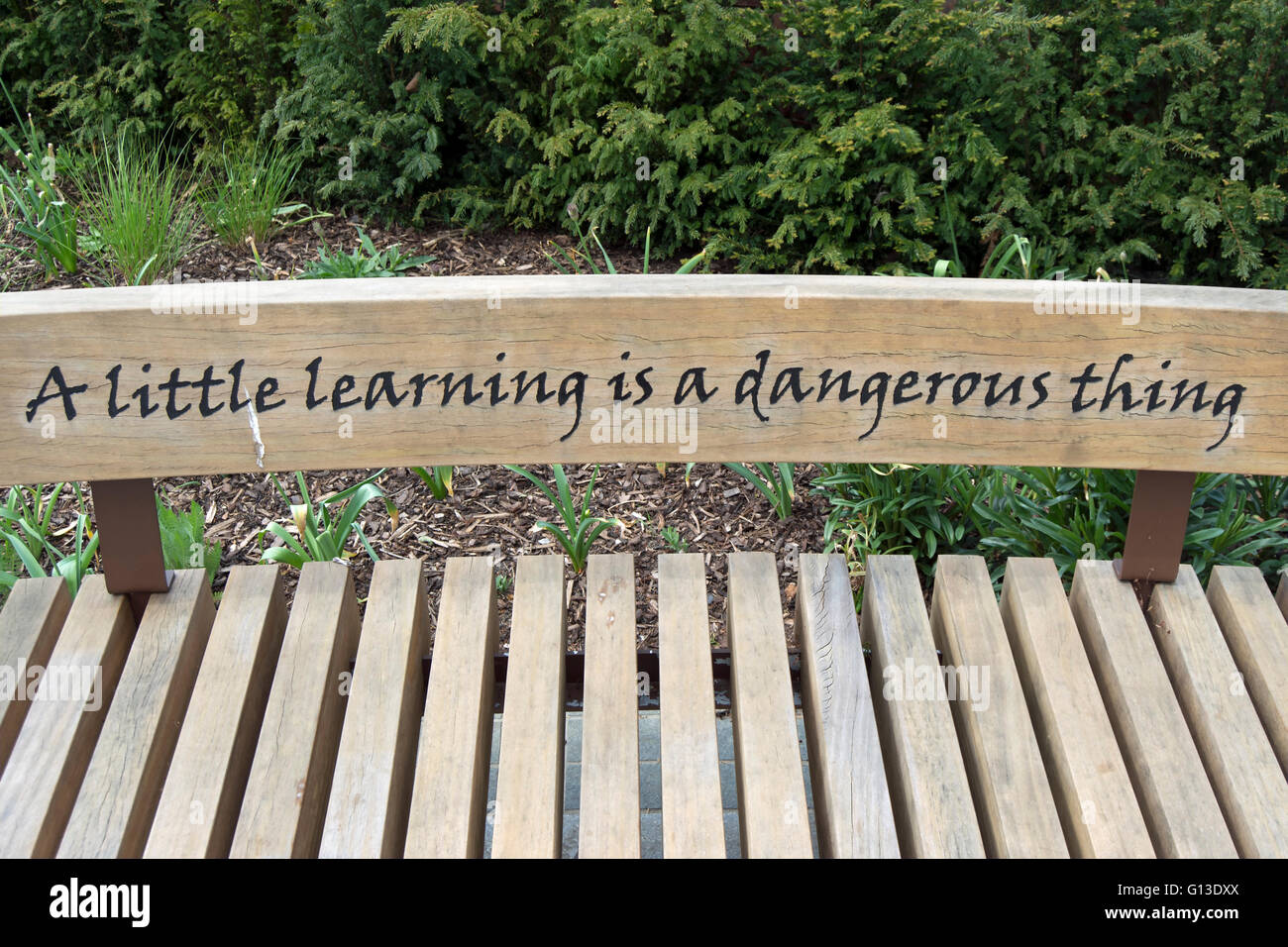 A Little Learning Is A Dangerous Thing Stock Photos & A Little ...