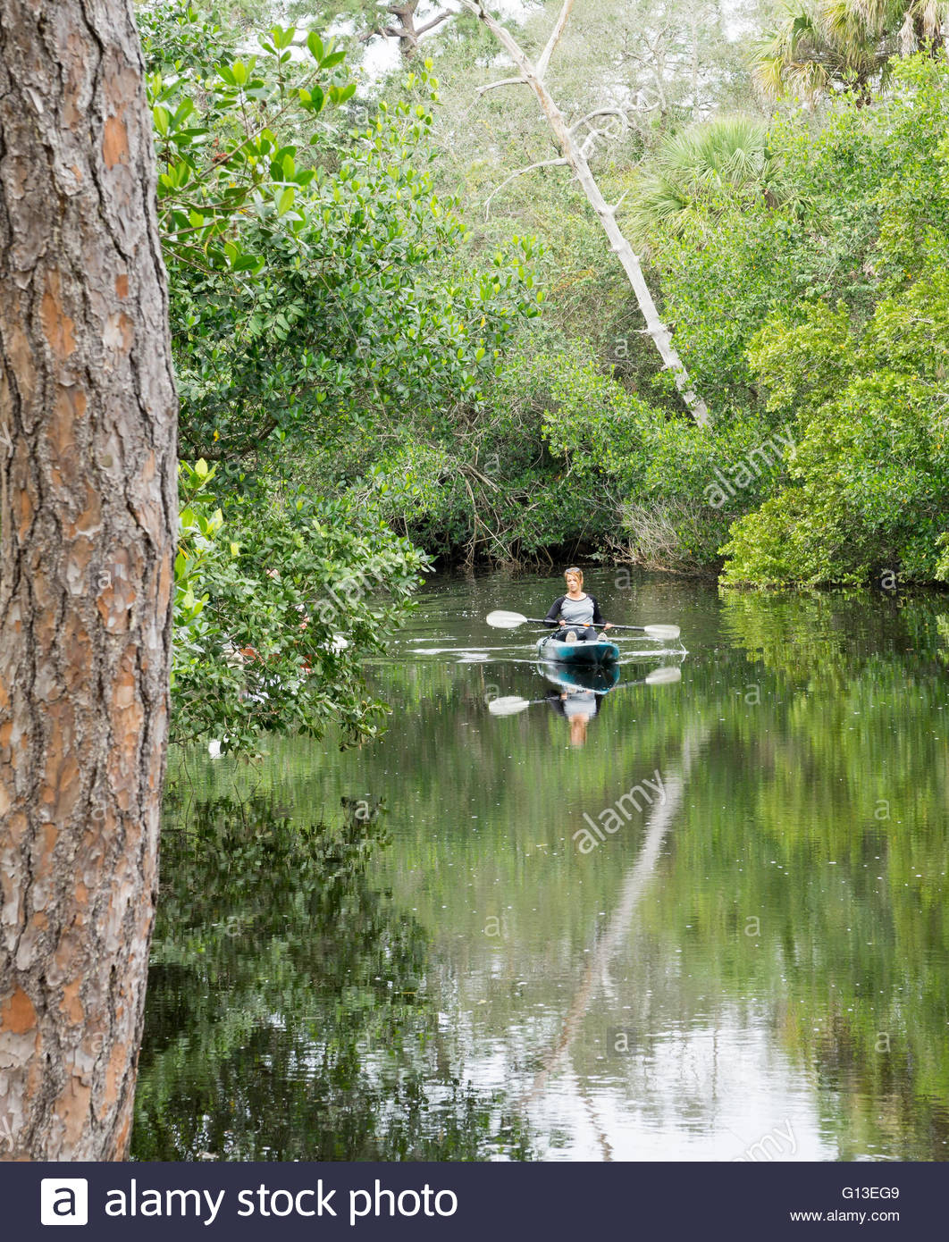 A woman kayaks on the Estero River along the Koreshan State Historic Site in Estero, Florida Stock Photo