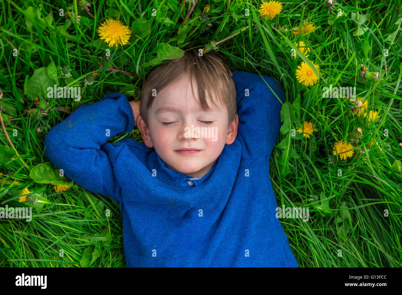 adorable child daydreaming in a field of flowers - Stock Image