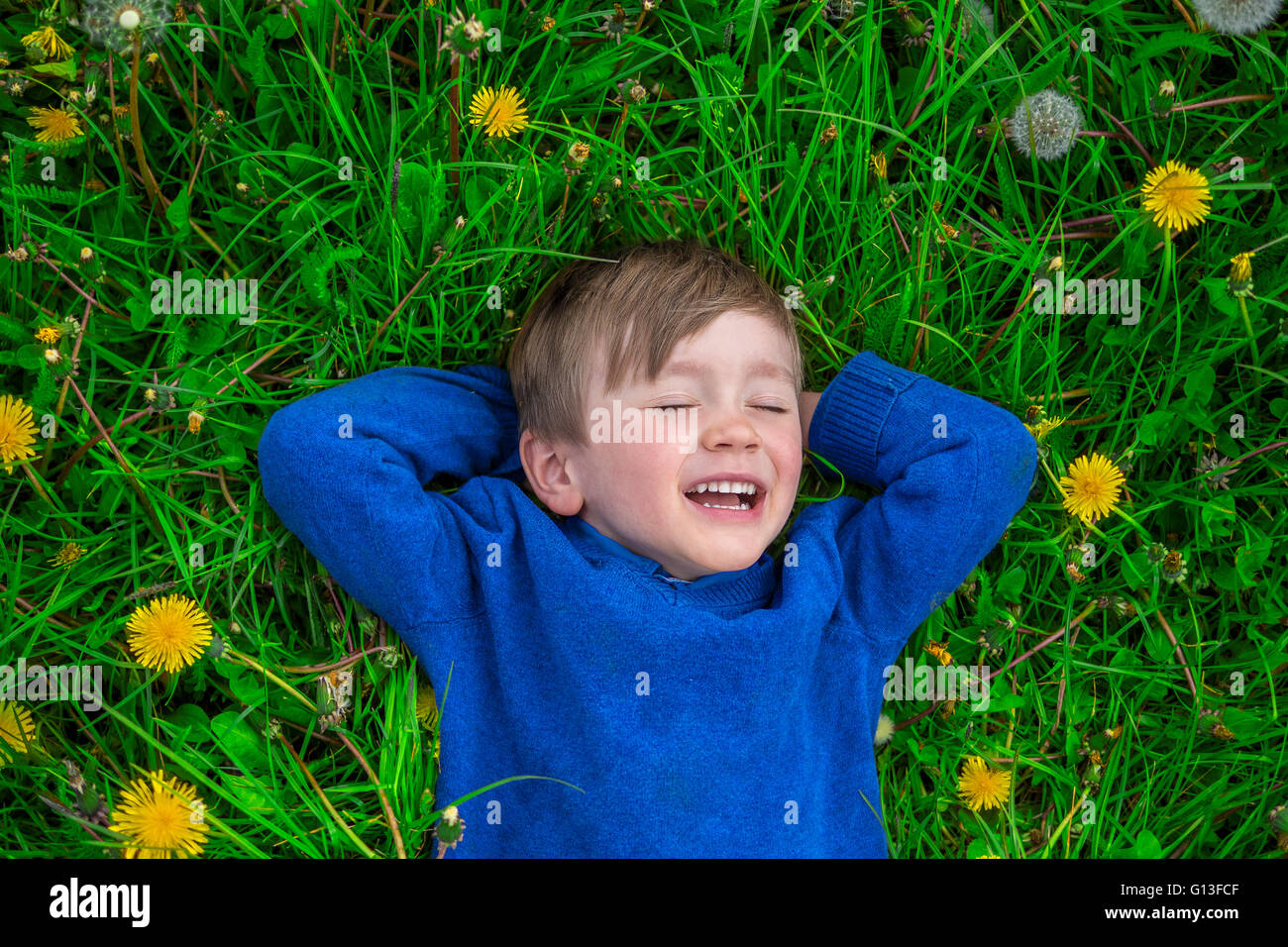 cute boy daydreaming in a field of flowers - Stock Image
