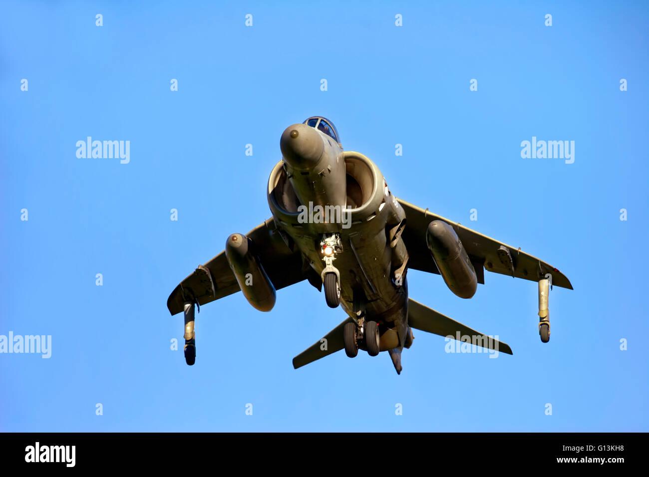 A Royal Navy Fleet Air Arm British Aerospace Sea Harrier F/A.2 XZ440 009 (cn 41H-912003) of 801NAS at RNAS Yeovilton, - Stock Image