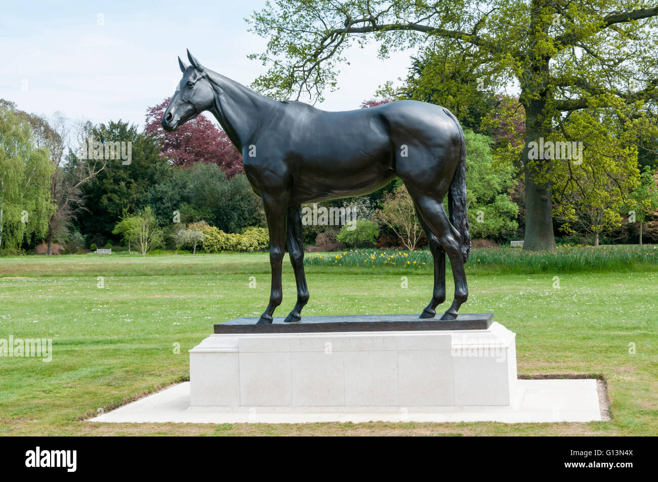 A statue of the queen's racehorse Estimate, at Sandringham.  By Tessa Campbell Fraser. - Stock Image
