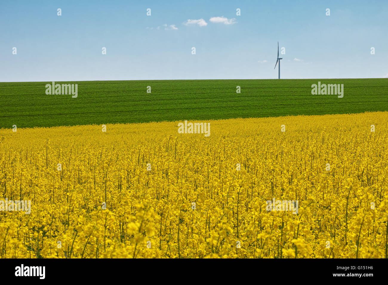 Wind wheels raps - Stock Image