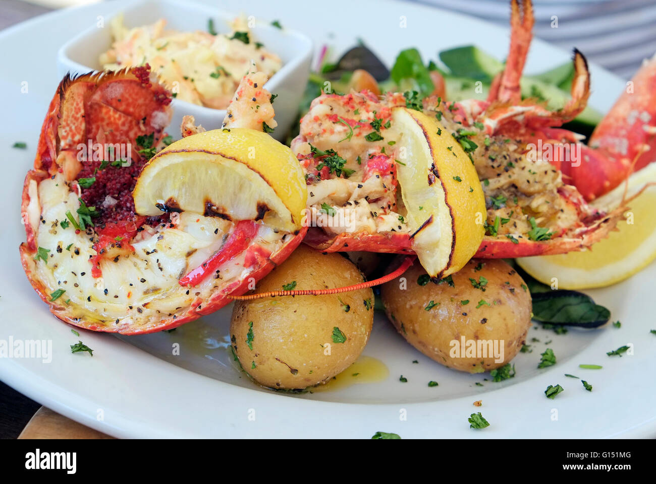 lobster lunch at the stiffkey red lion public house, north norfolk, england - Stock Image
