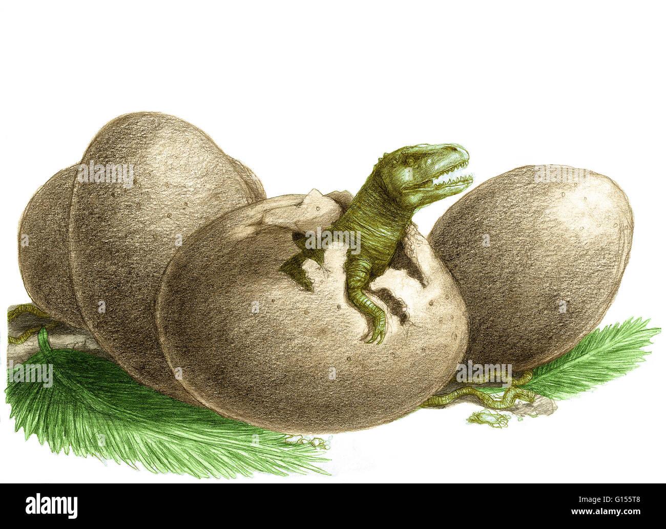 Color enhanced illustration of dinosaur egg hatching. - Stock Image