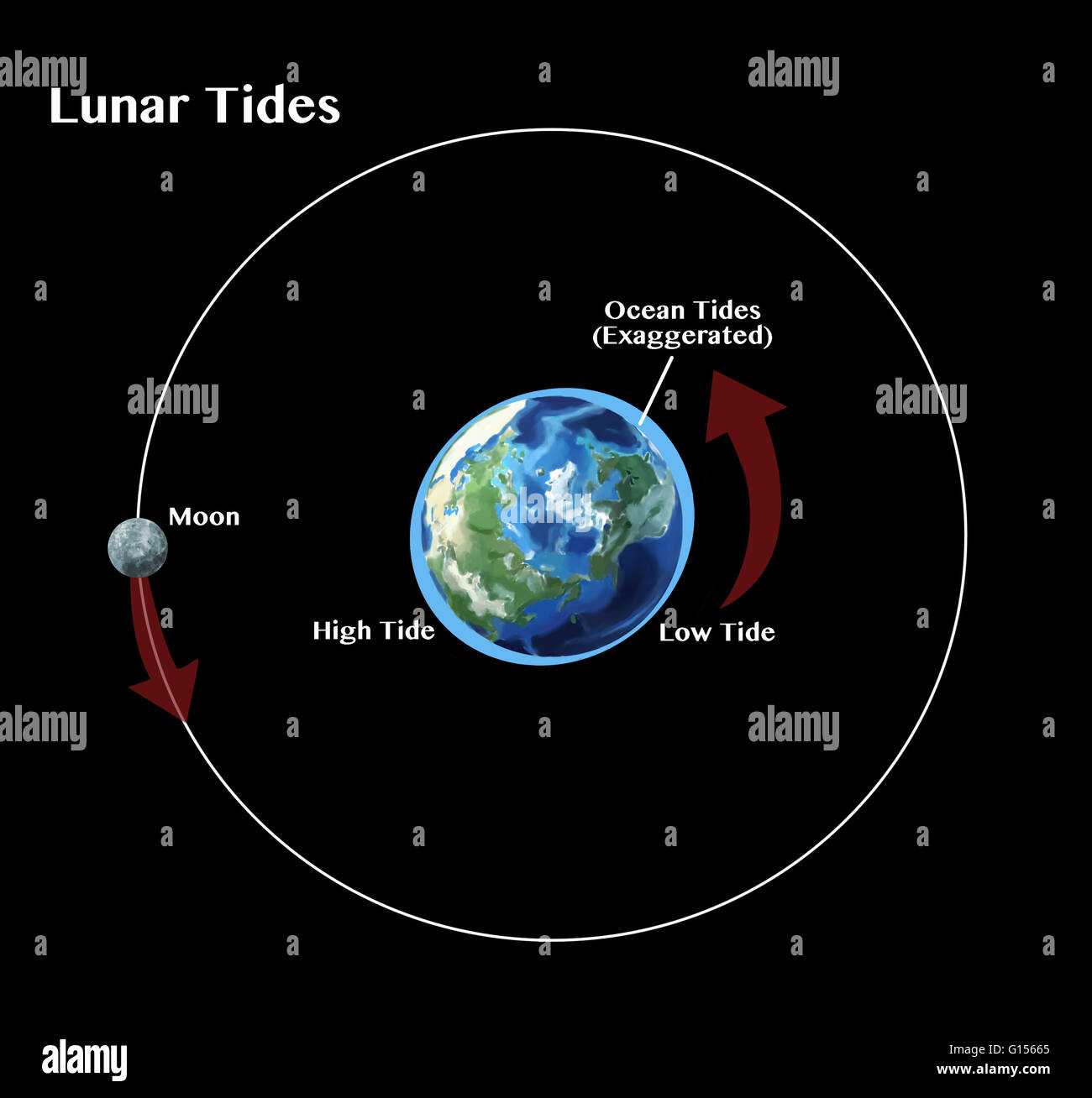 tides the rise and fall of sea levels are caused by the gravitational G15665 earth rotation diagram stock photos & earth rotation diagram stock