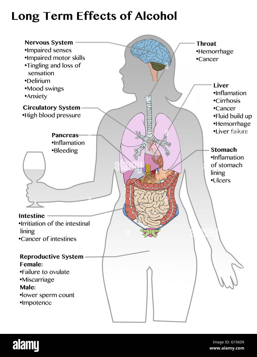 the effects of excessive alcohol on a persons behavior Drinking massive amounts of alcohol has numerous negative effects on the human body like, headaches, distorted vision and hearing, alcohol poisoning, high blood pressure, liver disease, and nerve damage, alcohol leads to addiction and can put people at a higher risk of over 200 disorders like tuberculosis and pneumonia (time 1.