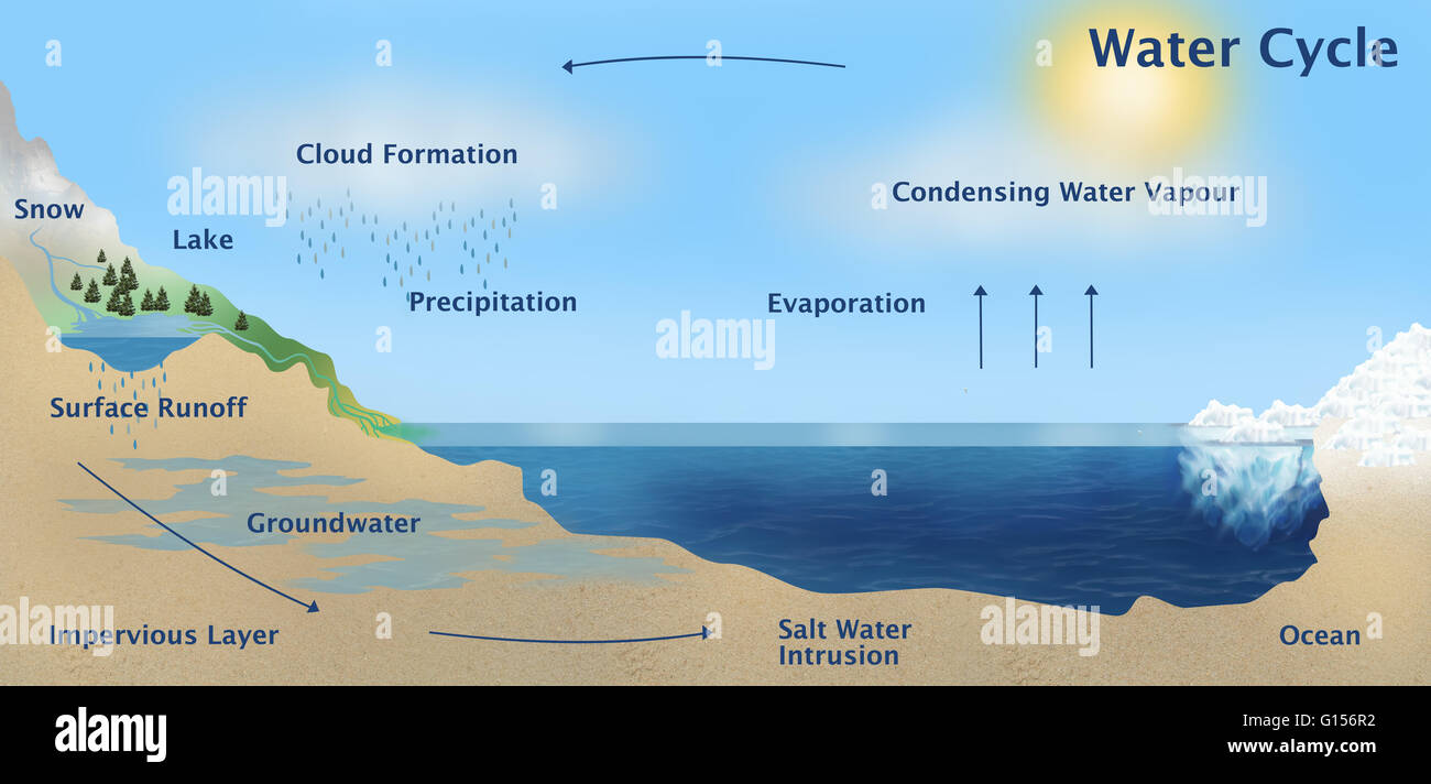 Illustration of the Earth's water cycle. - Stock Image