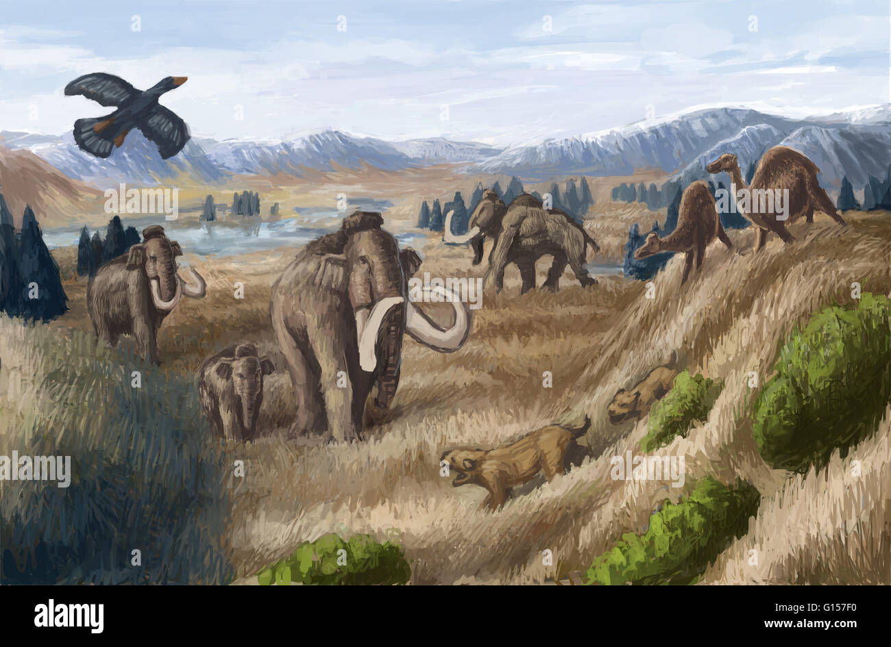 Artist's impression of a Tertiary period landscape. This period extended from 65 to about 2 million years ago - Stock Image