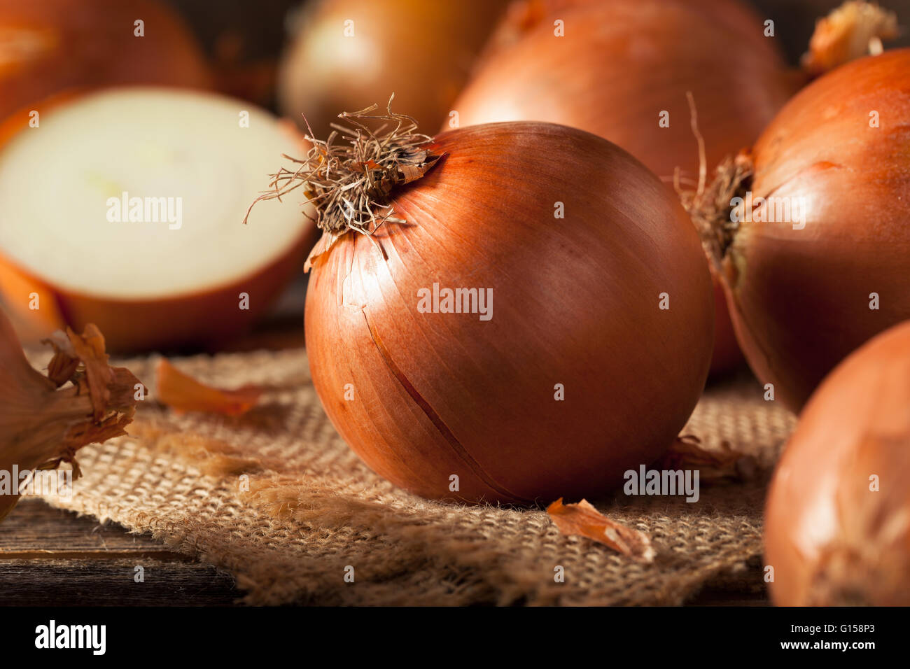Raw Organic Yellow Onions Ready for Cooking - Stock Image