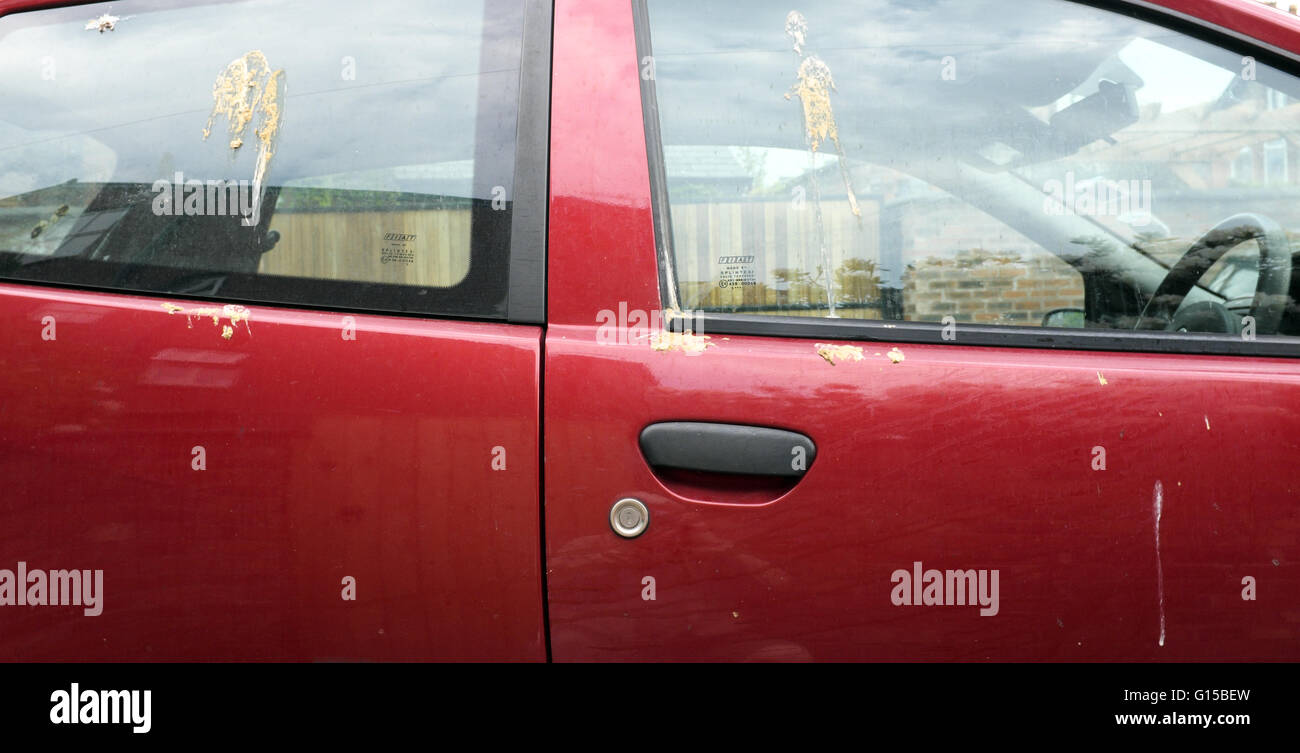 a red car has its windows and bodywork splattered with bird-droppings - Stock Image