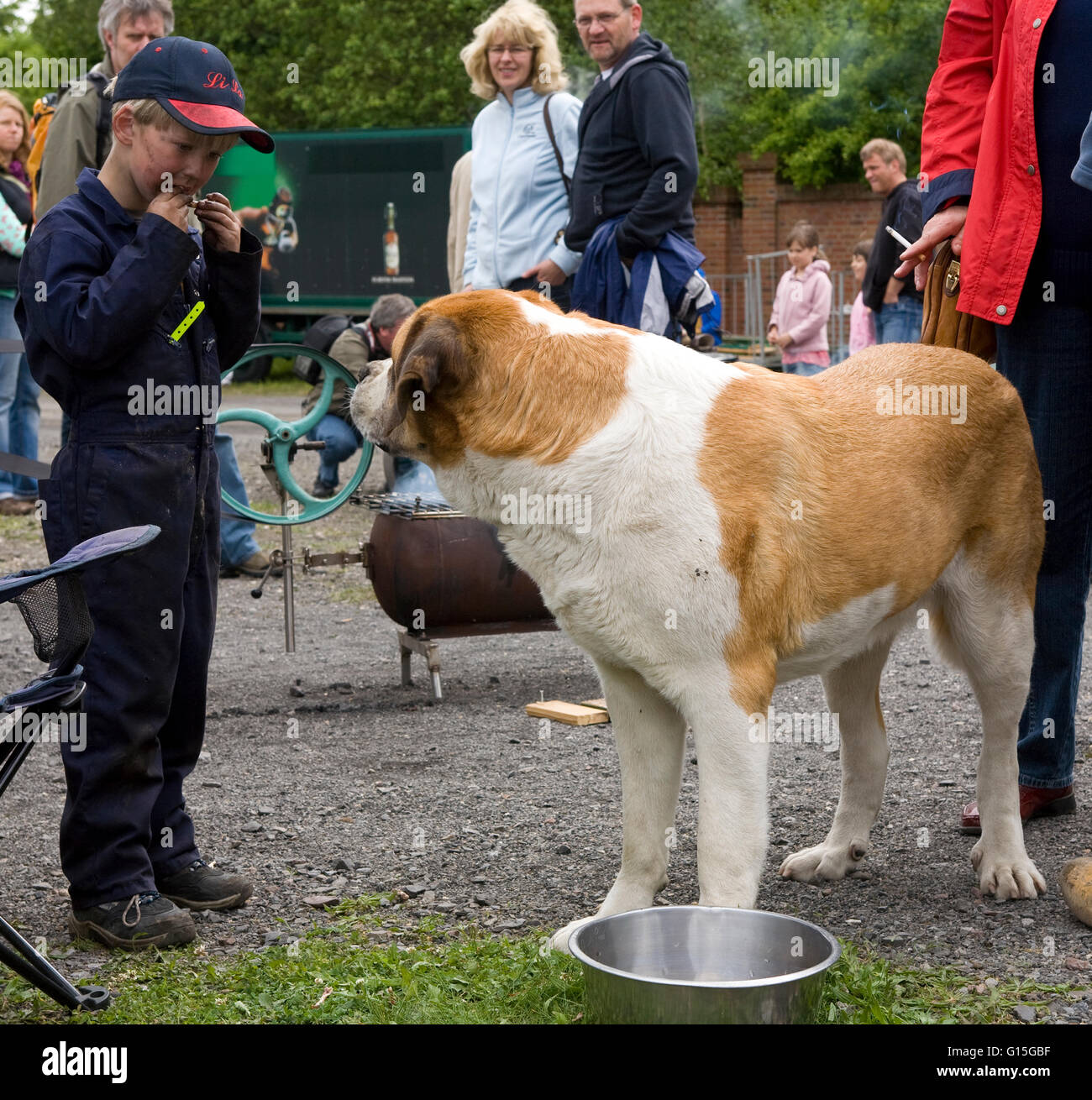 Europe, Germany, North Rhine-Westphalia, Ruhr area, Bochum, boy gnaws a bone, dog is watching him. Stock Photo
