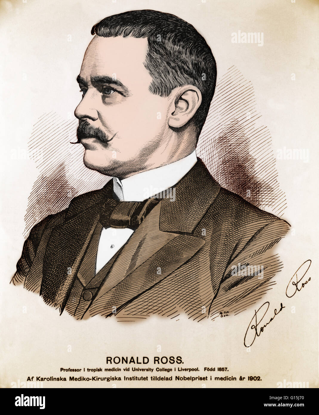 Ronald Ross (May 13, 1857 - September, 16 1932) was a British doctor. He was born in India where his grandfather - Stock Image