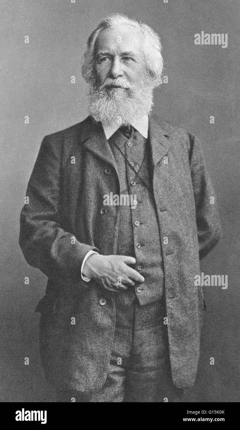 Ernst Heinrich Philipp August Haeckel (1834-1919) was an eminent German biologist, naturalist, philosopher, physician, - Stock Image
