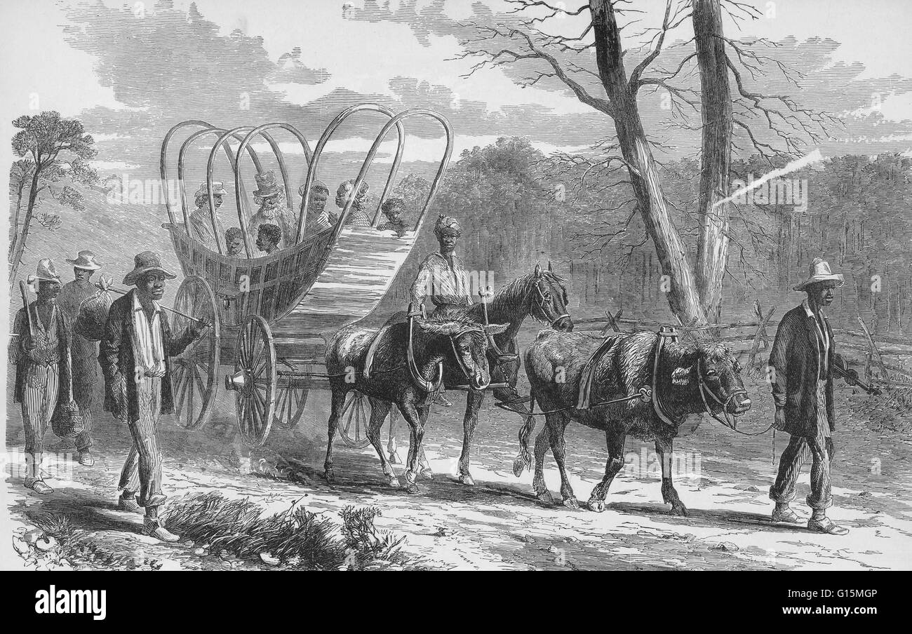 Contrabands Coming Into Federal Camp, 19th Century. Illustration captioned: 'The war in Virginia - contrabands - Stock Image
