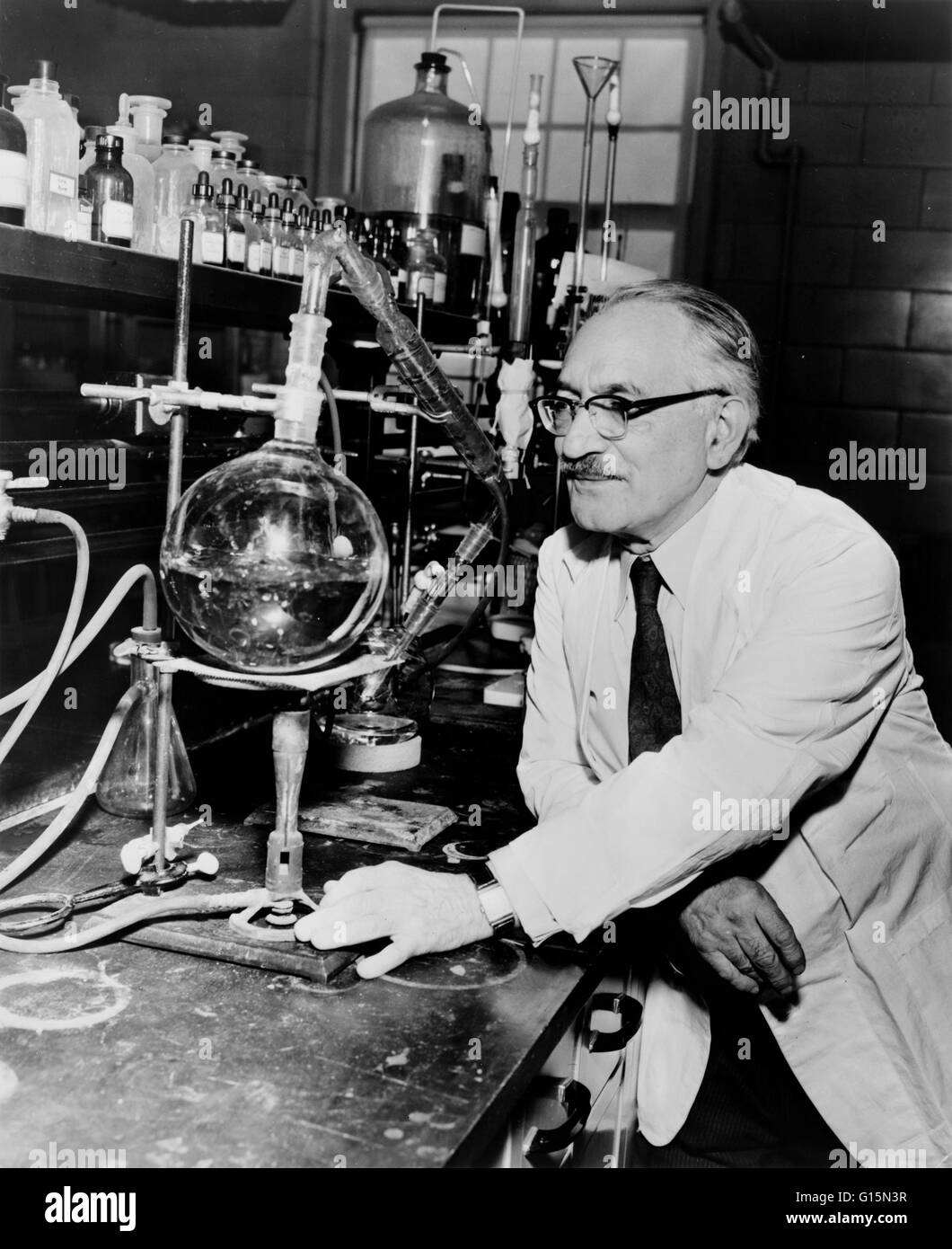 Selman Abraham Waksman (July 22, 1888 - August 16, 1973) was a Ukrainian-American biochemist and microbiologist - Stock Image