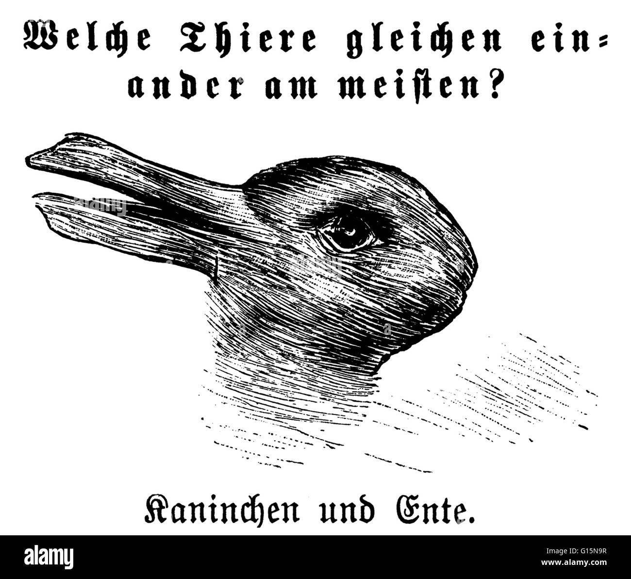 Entitled: 'Welche Thiere gleichen einander am meisten? '(Which animals are most like each other?), with - Stock Image