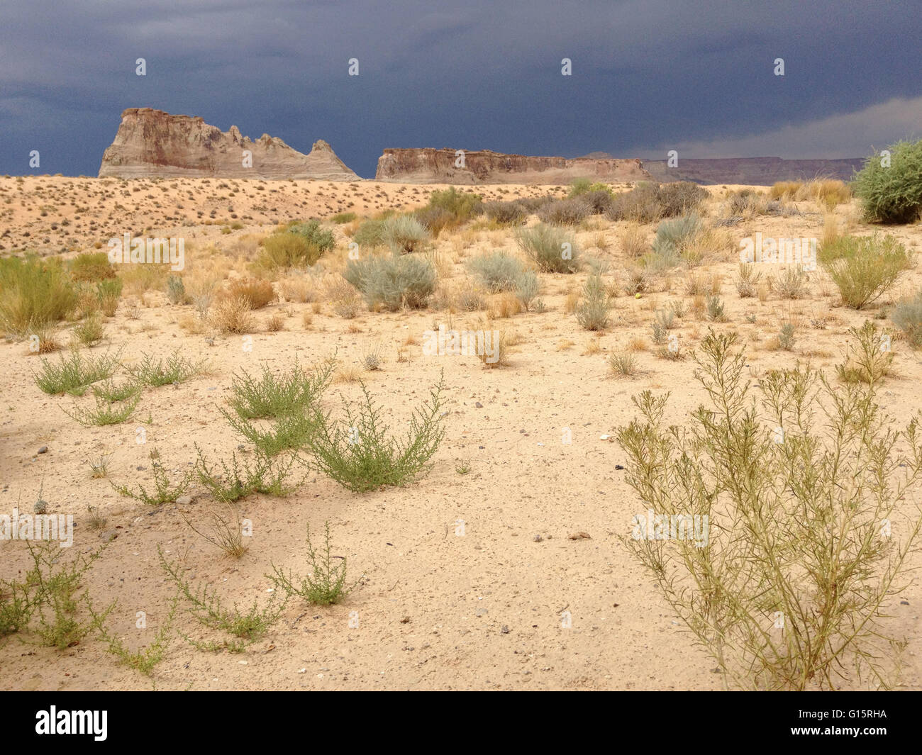 sandy foreground with sparsely populated plants, mountains and dark sky in background - Stock Image