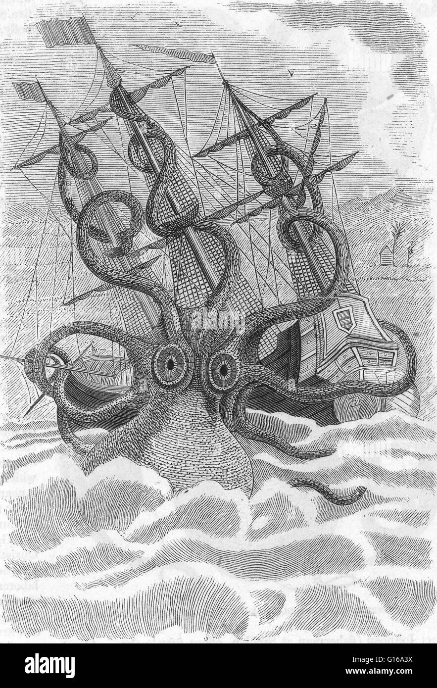 The colossal octopus drawing by malacologist Pierre Dénys de Montfort, 1801, from the descriptions of French - Stock Image