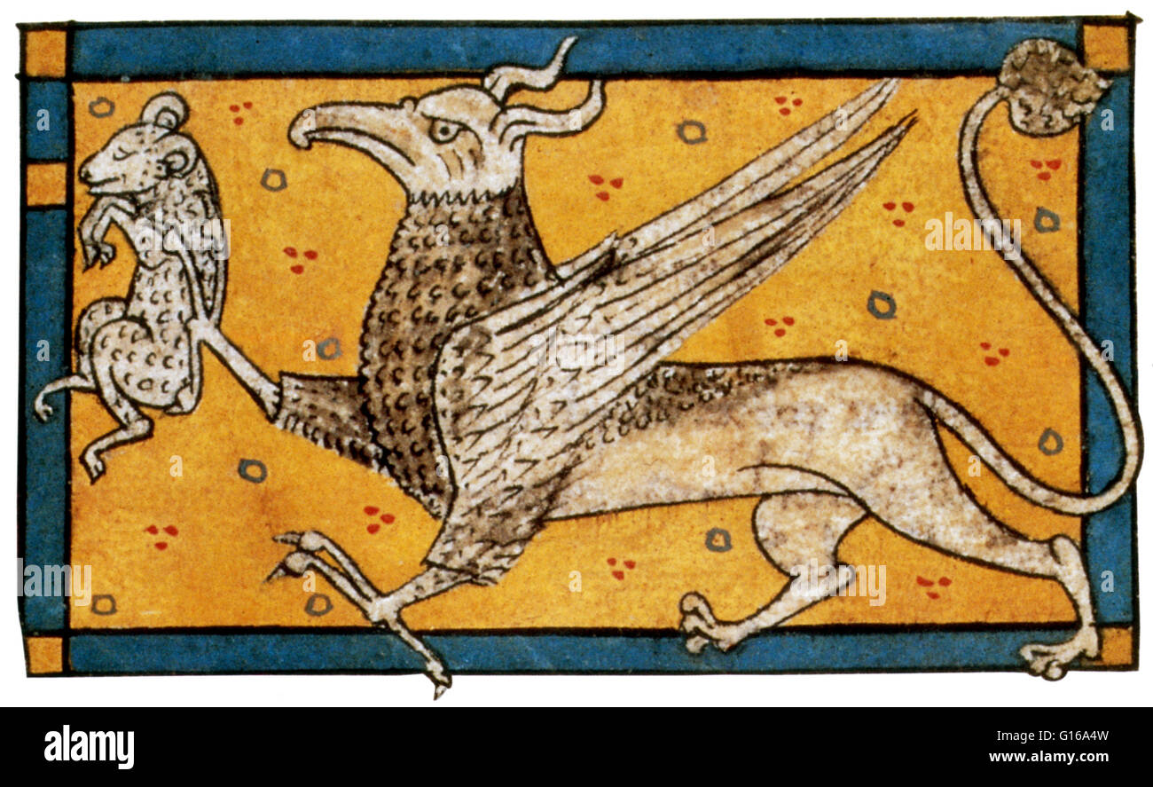 Griffin with prey appears in Bestiaire in Verse by Philippe de Thaon, 1285. The griffin is a legendary creature - Stock Image