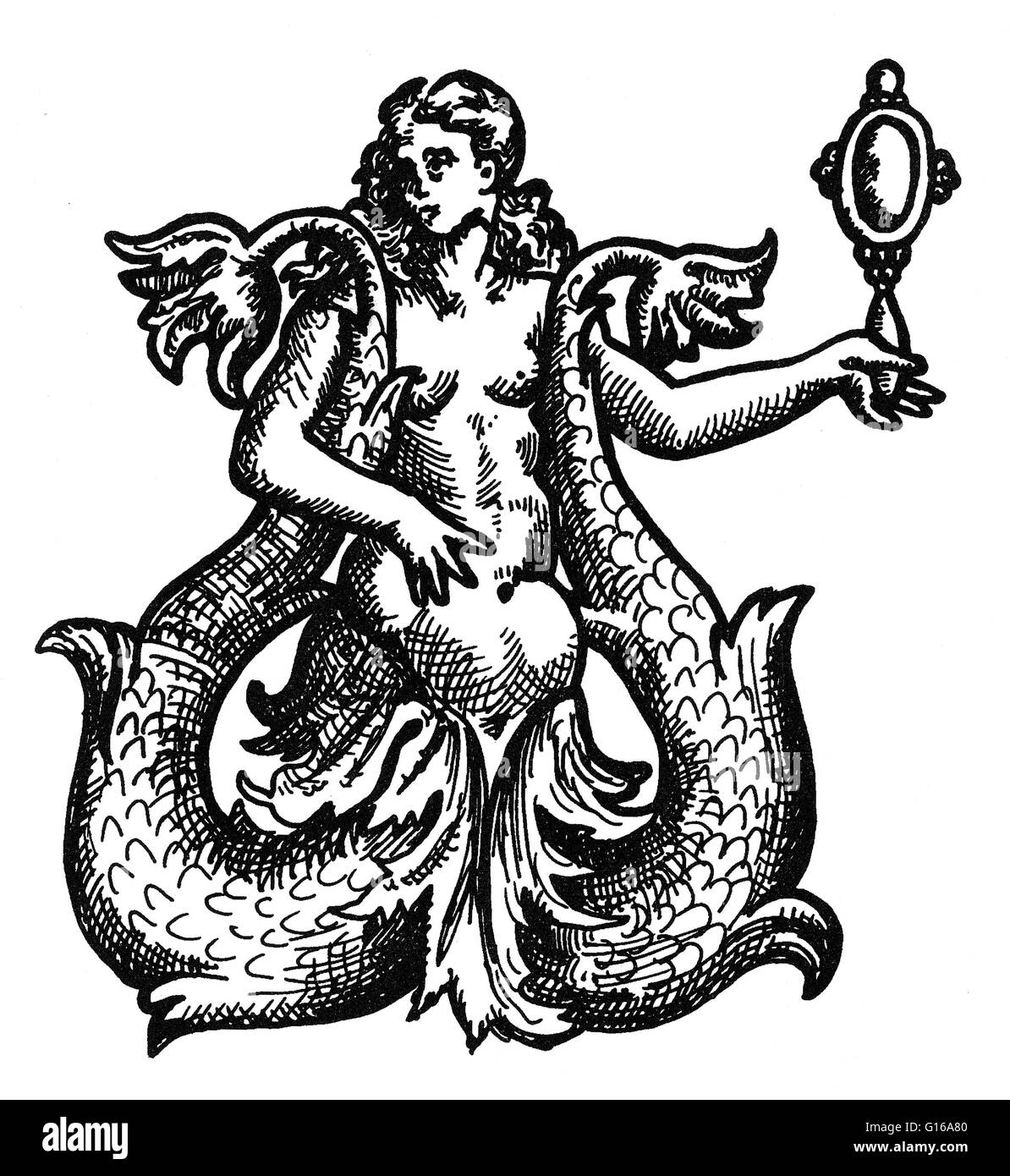 A mermaid is a legendary aquatic creature with the upper body of a female human and the tail of a fish. Mermaids - Stock Image