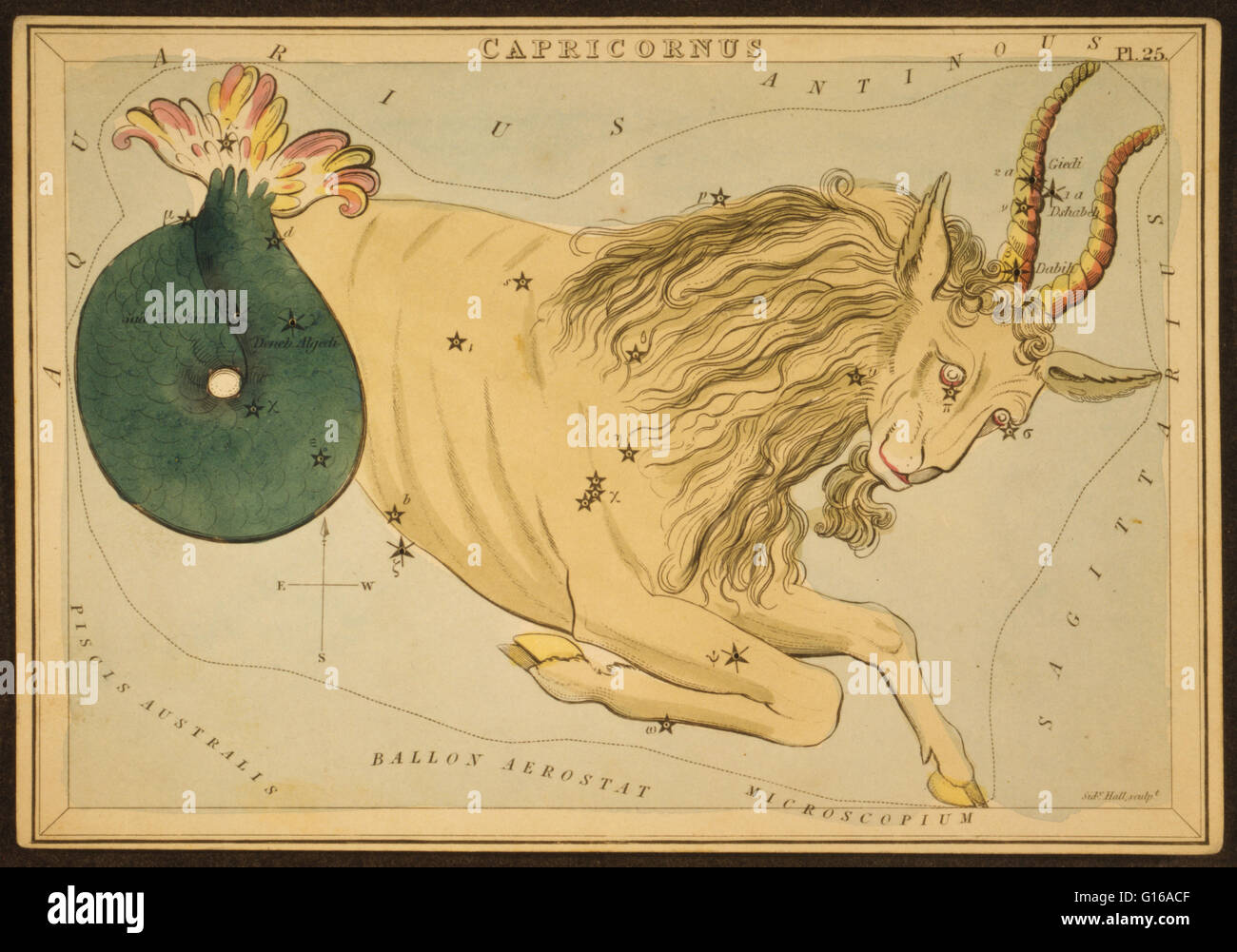 Astronomical chart showing a goat forming the constellation. Capricornus is one of the constellations of the zodiac, - Stock Image