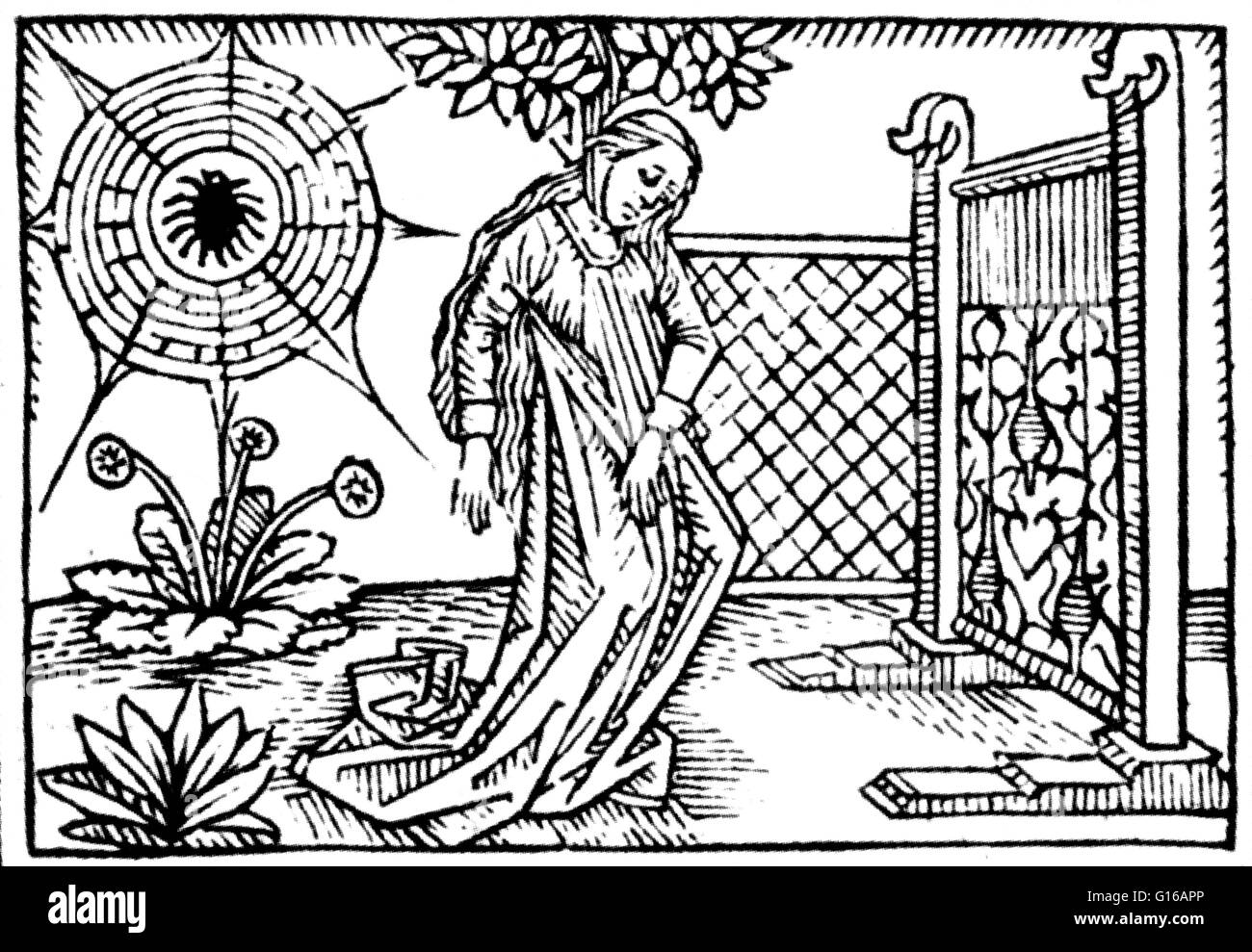Arachne was a weaver who boasted that her skill was greater than that of Athena, the Greek goddess of wisdom, weaving, - Stock Image