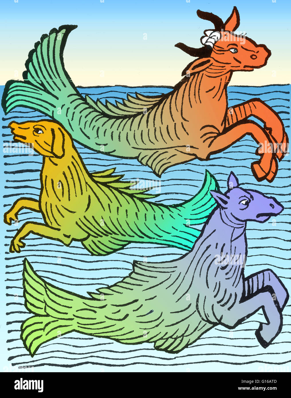 Woodcut of three mythical sea creatures (a sea cow, sea dog, and sea horse) from Hortus Sanitatis printed by Jacob - Stock Image