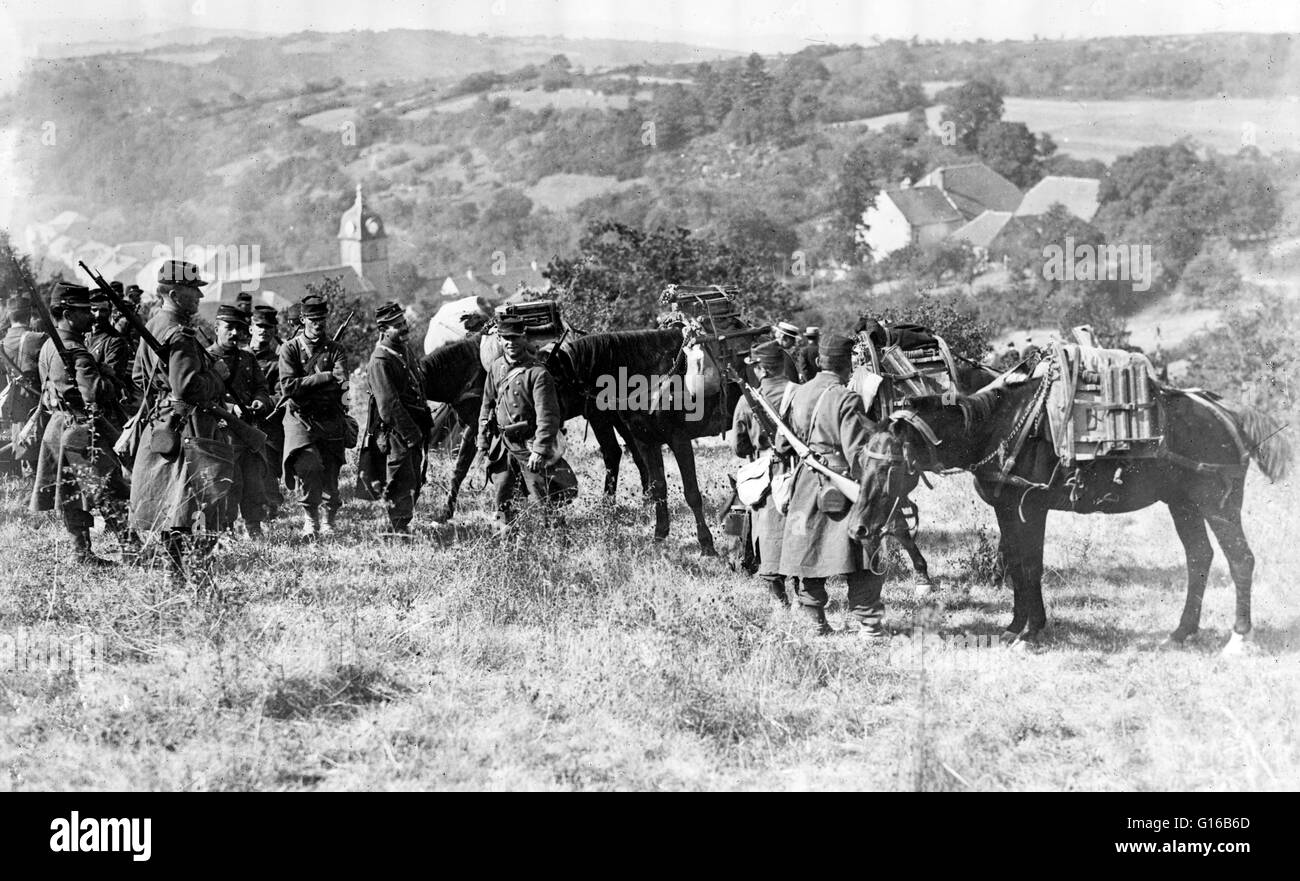 French soldiers with pack horses which are carrying mitrailleuses (disassembled machine guns) at the beginning of - Stock Image