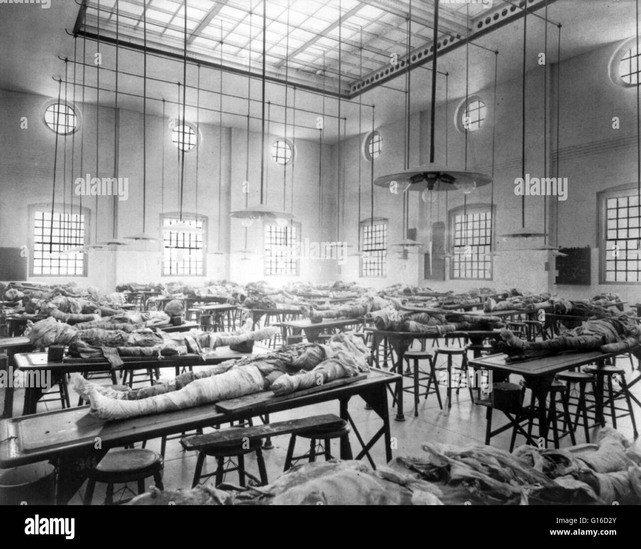 Dissecting Room Stock Photos Dissecting Room Stock Images Alamy -> Sala De Tv Jefferson
