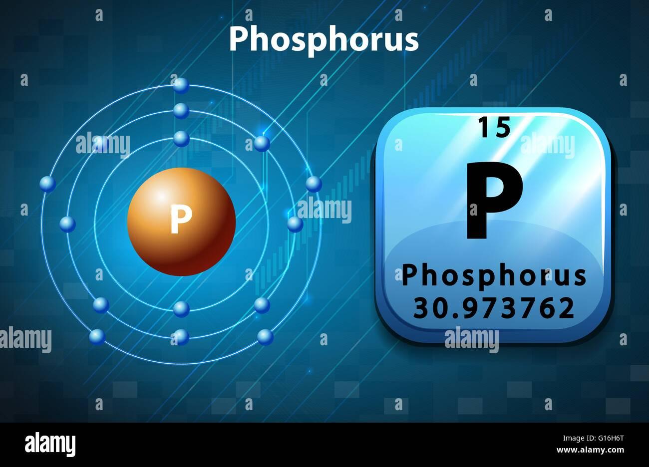 Flashcard of phosphorus atom illustration stock vector art flashcard of phosphorus atom illustration ccuart Choice Image