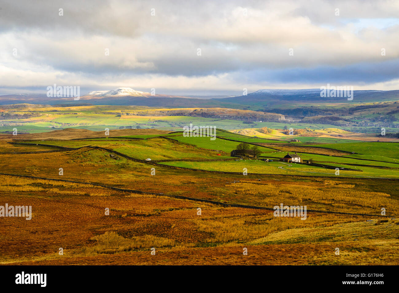 Pen-y-Ghent  and Fountains Fell from Rathmell Common in the Bowland Fells Lancashire England - Stock Image