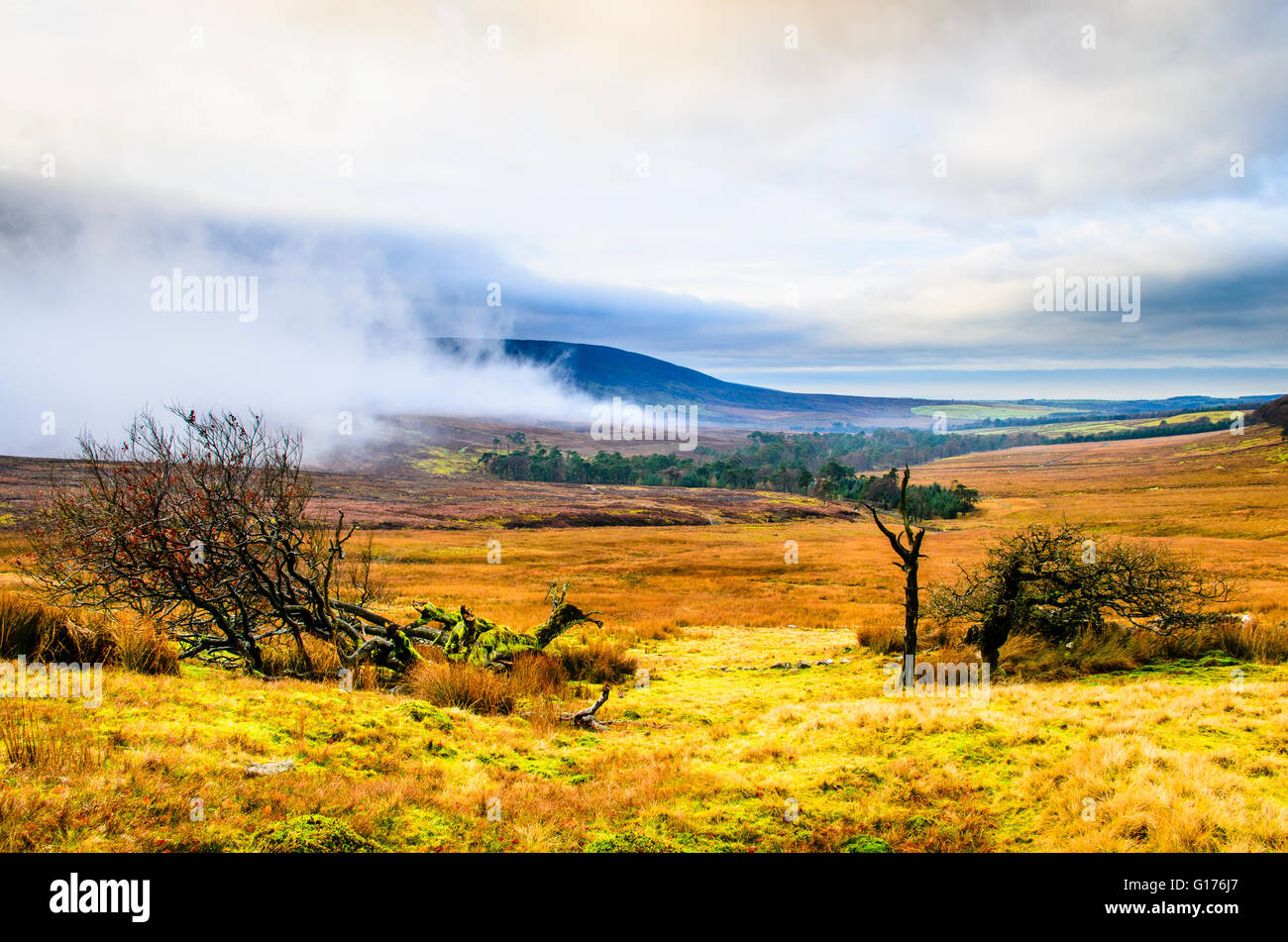 Mist and cloud in Wyresdale in the Bowland Fells near Lancaster Lancashire England looking towards Hawthornthwaite - Stock Image