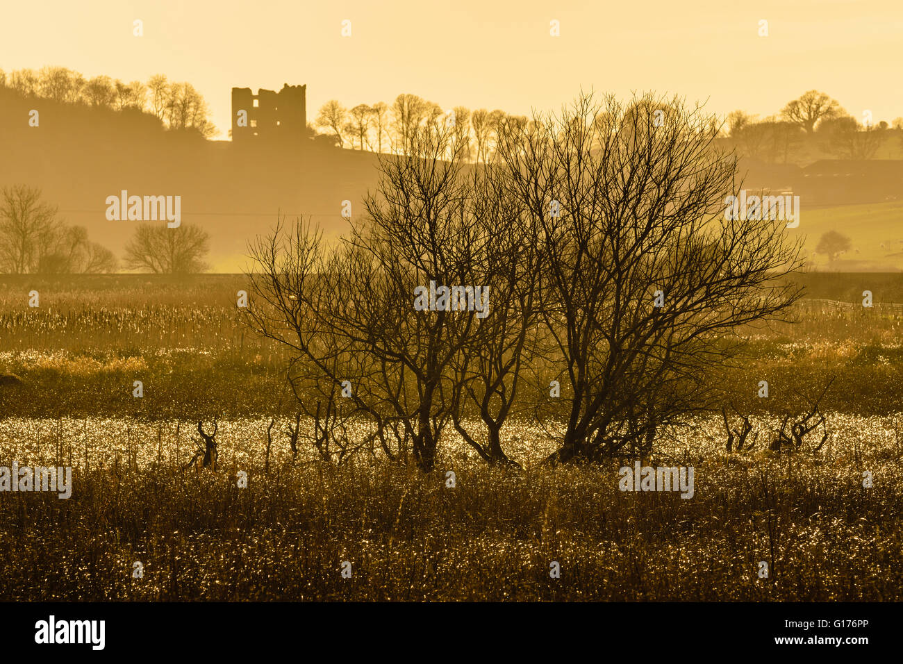 Silverdale Moss and Arnside Tower in the Arnside-Silverdale Area of Outstanding Natural Beauty Cumbria England - Stock Image