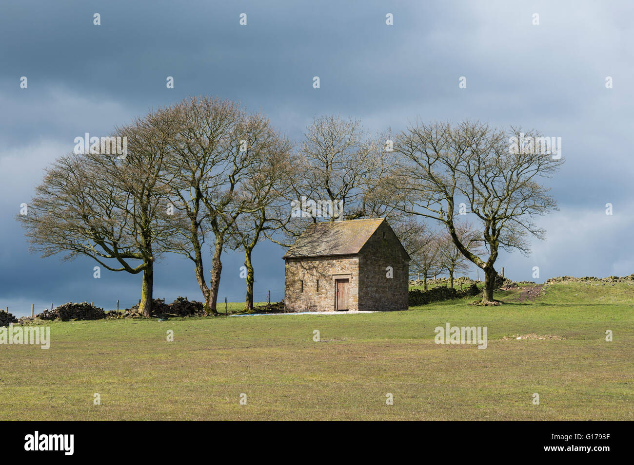 A stone barn, Peak District, Staffordshire Moorlands - Stock Image