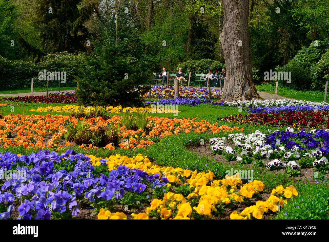 Blumenbeete, Luiseninsel, Park, Grosser Tiergarten, Tiergarten, Berlin, Deutschland - Stock Image