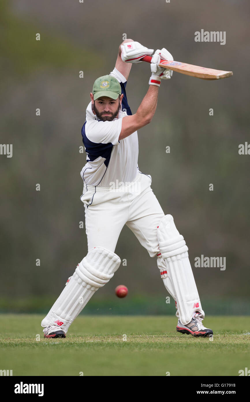 Marnhull CC 1st XI v Poole Town 1st XI,  Poole CC player in action batting Stock Photo