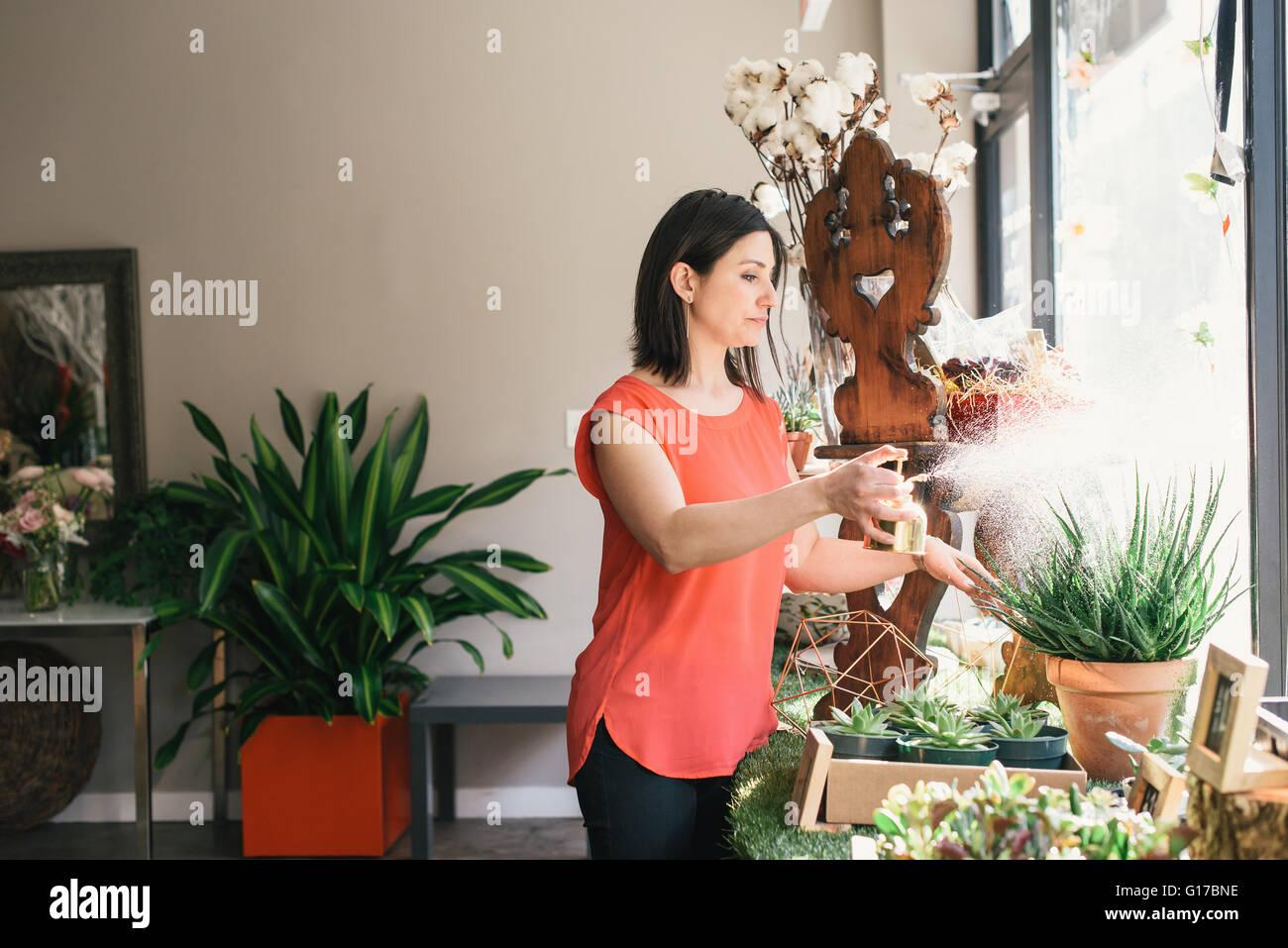 Florist watering plants in flower shop - Stock Image