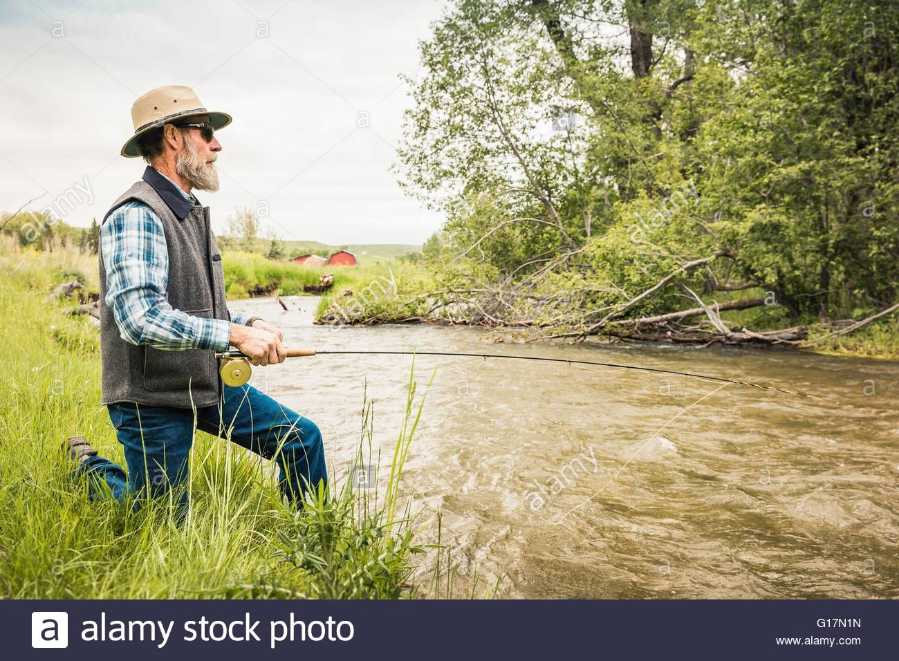 Man kneeling on river bank fly fishing - Stock Image