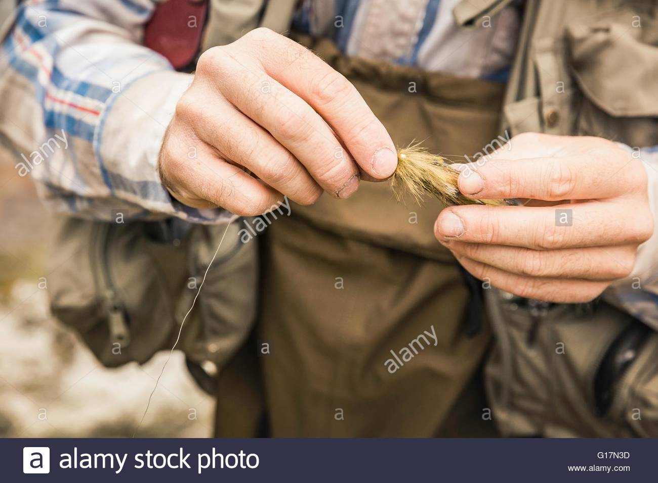 Cropped view of mans hands holding fishing fly - Stock Image