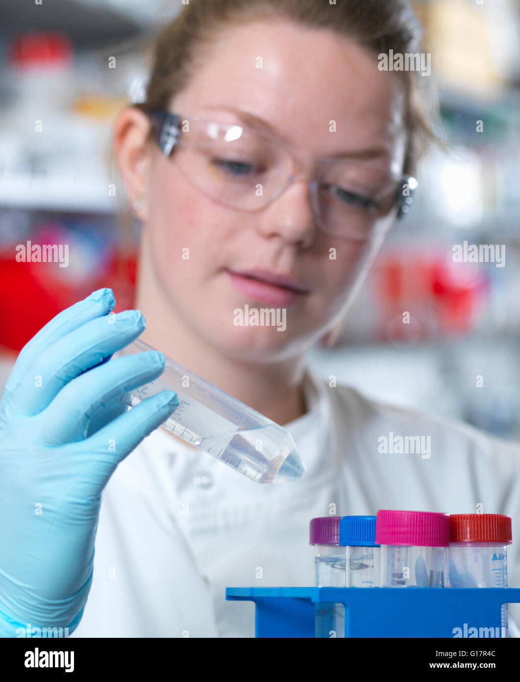 Scientist preparing buffer for antibody purification in laboratory, Jenner Institute, Oxford University - Stock Image