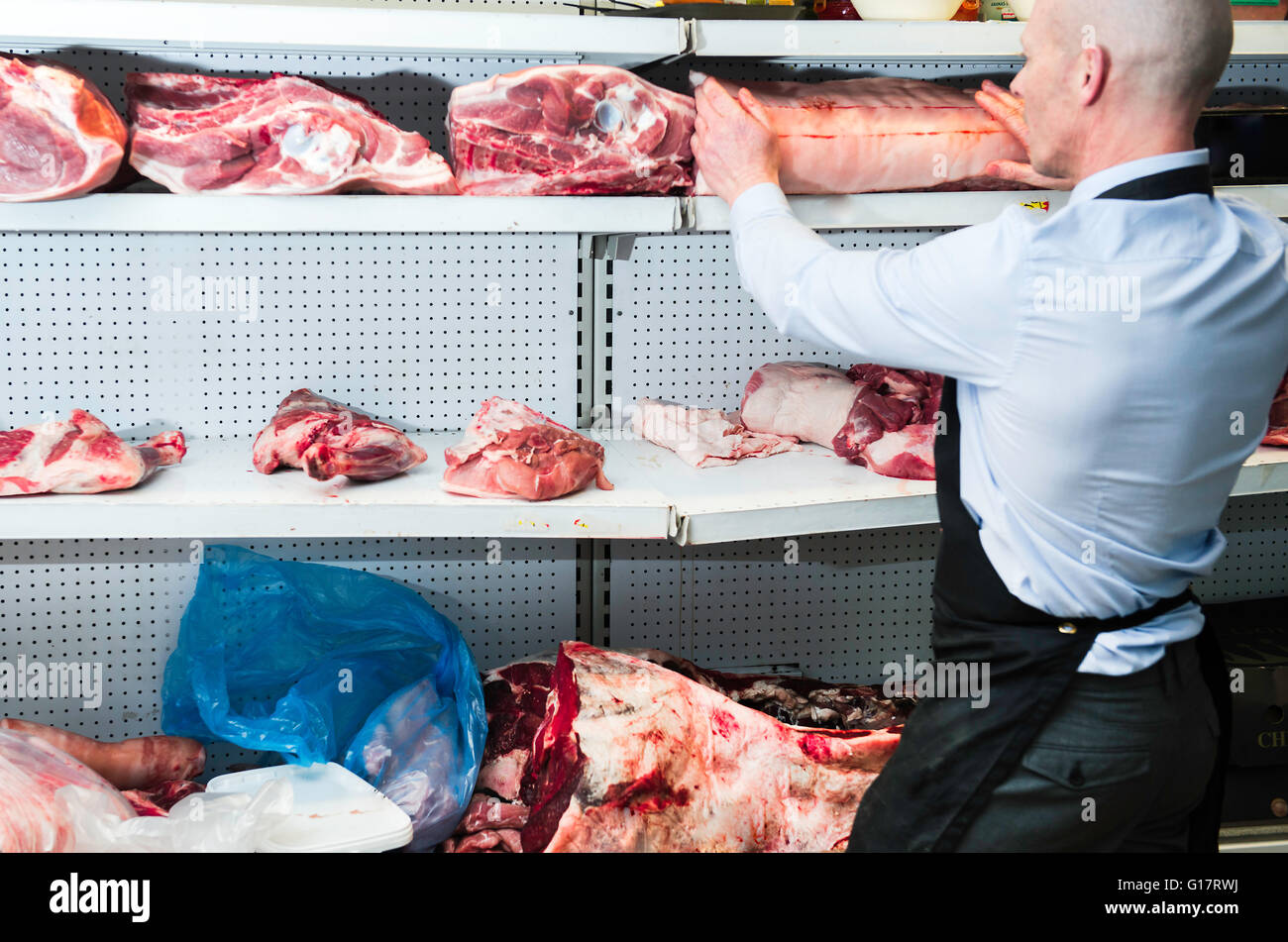 Butcher placing joint of meat on refrigerated cabinet, rear view - Stock Image