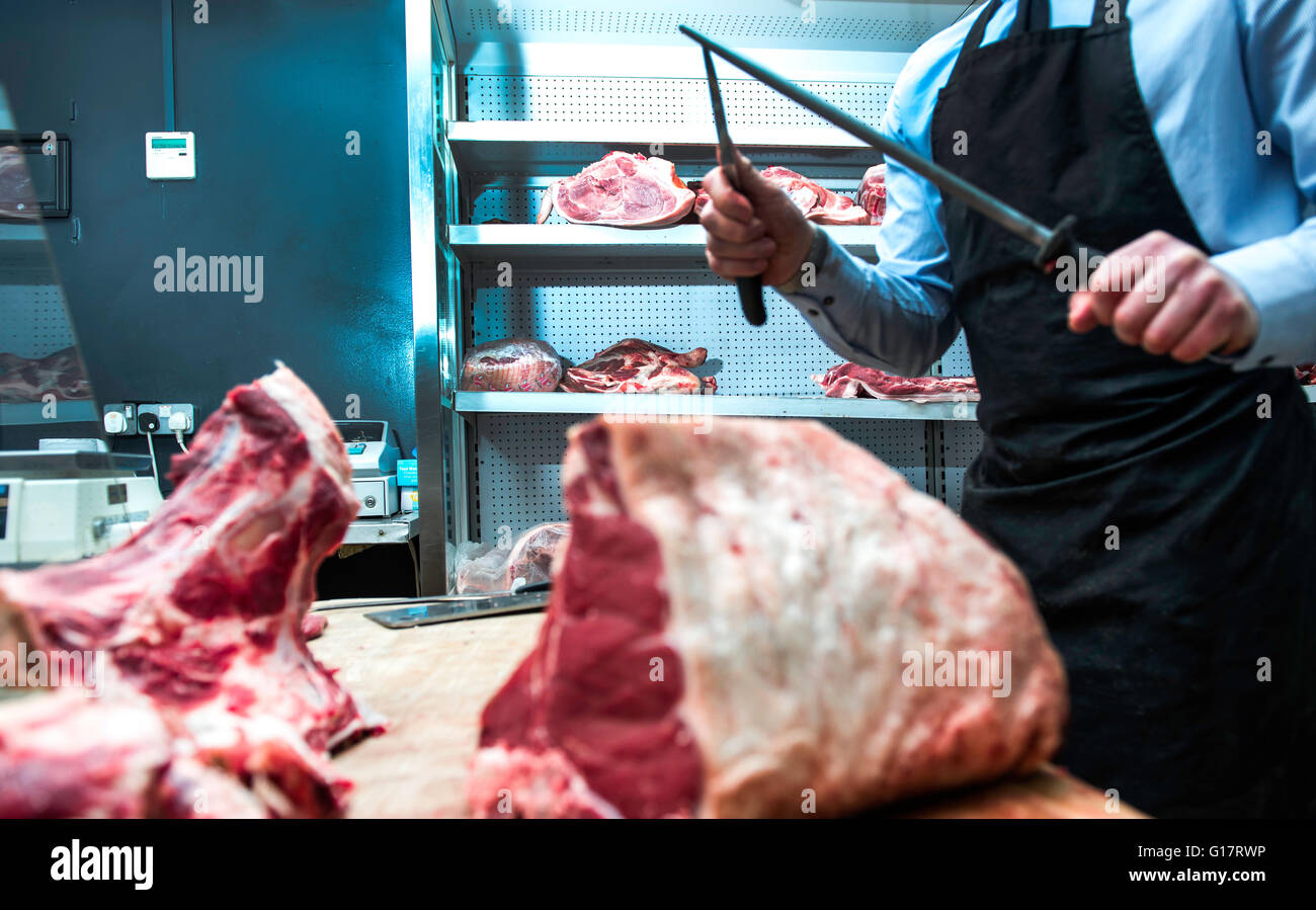 Butcher sharpening knife on knife steel in butcher's shop, mid section - Stock Image