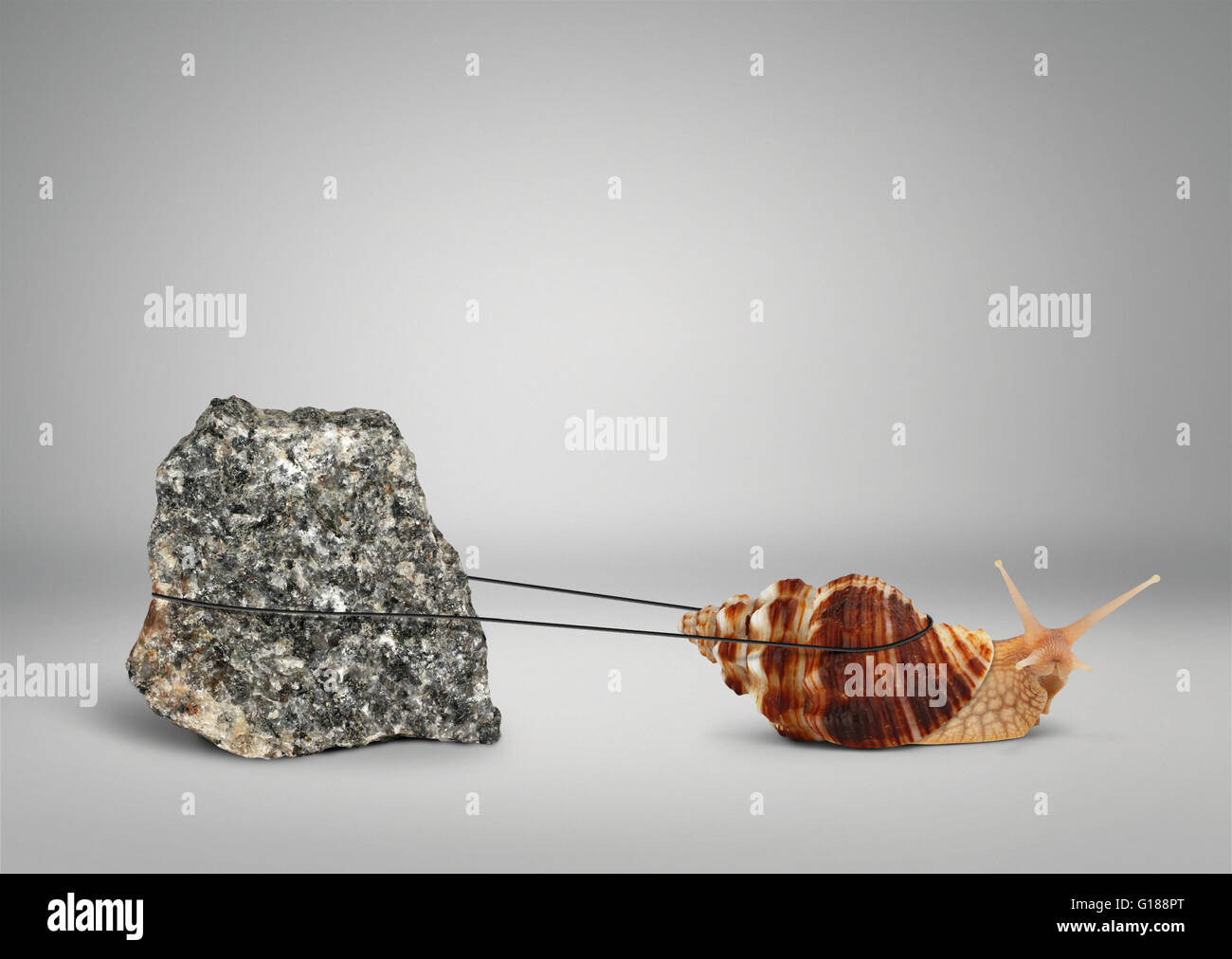 Snail pulling big stone, persistence concept - Stock Image