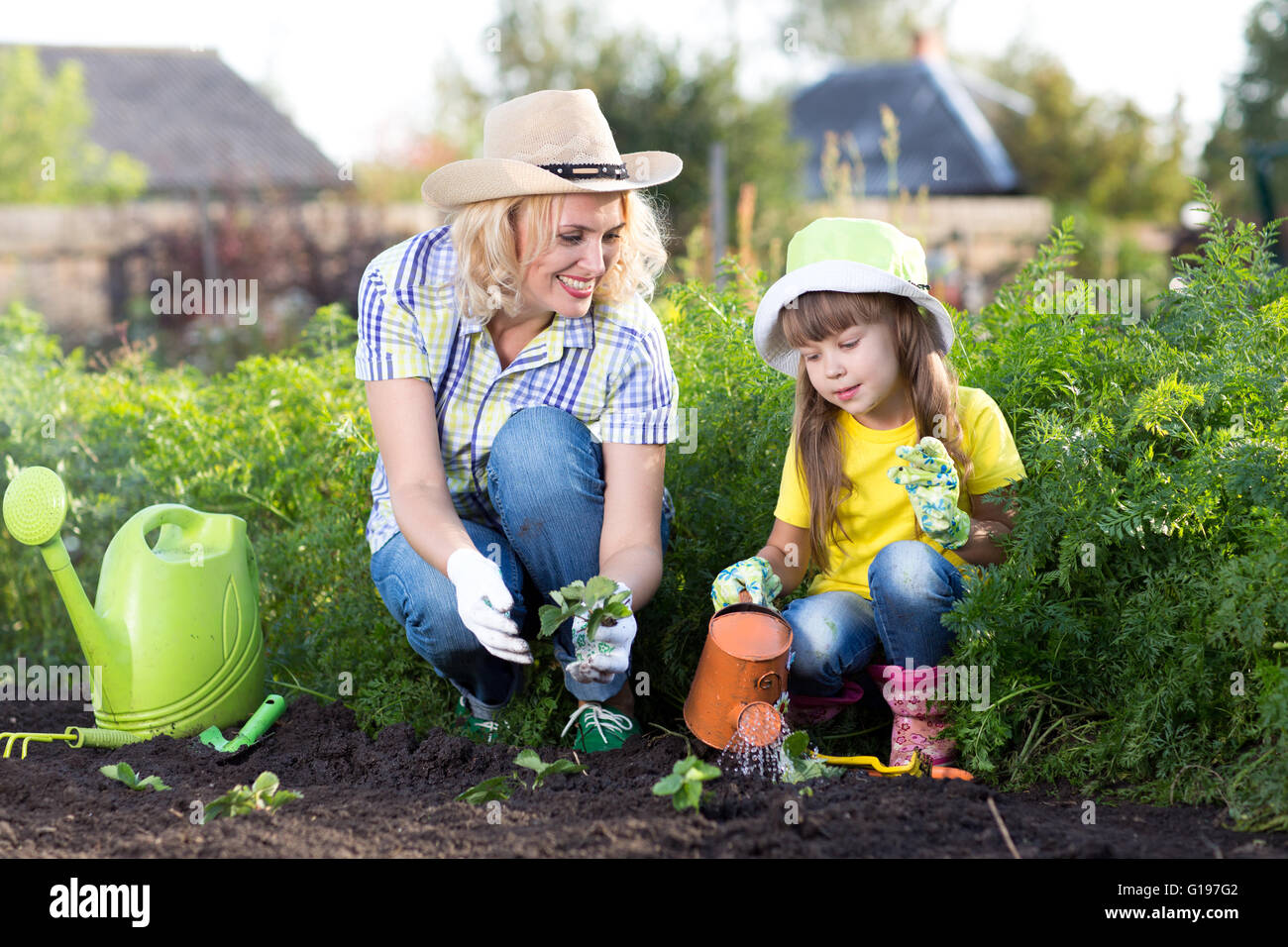 Mother and kid daughter planting strawberry seedling in a garden. Little girl watering new plants. Stock Photo