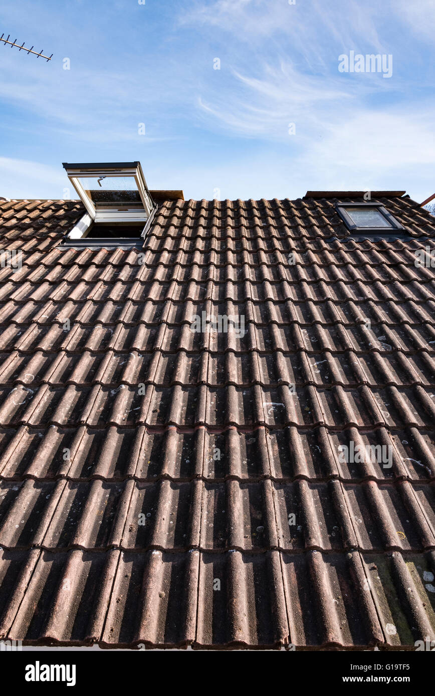 Tiled house roof with open skylight window - Stock Image