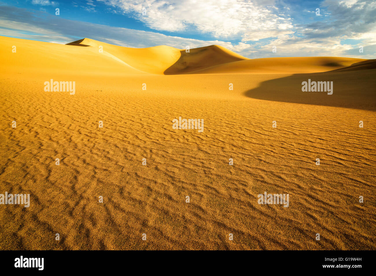 Sand dunes at sunrise in the Desert - Stock Image
